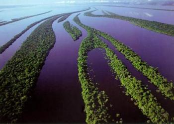 Амазонка – самая большая река в мире